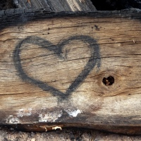 El amor, bueno y malo-- 1 Juan 2:7